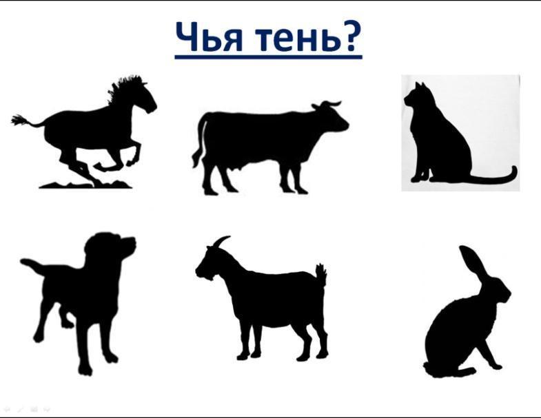 Картинки тени животных для детей (7)