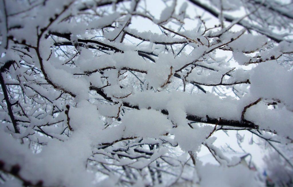 Красивые картинки на рабочий первый снег (16)