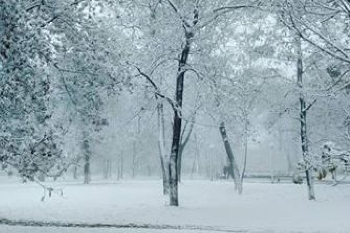 Красивые картинки на рабочий первый снег (17)