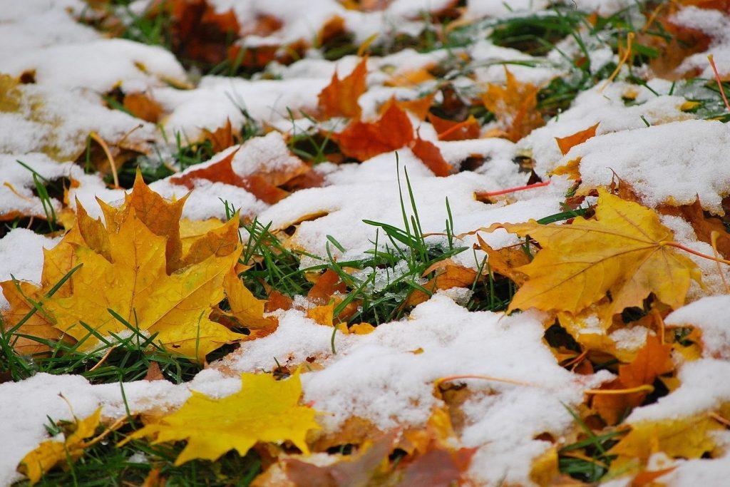 Красивые картинки на рабочий первый снег (5)