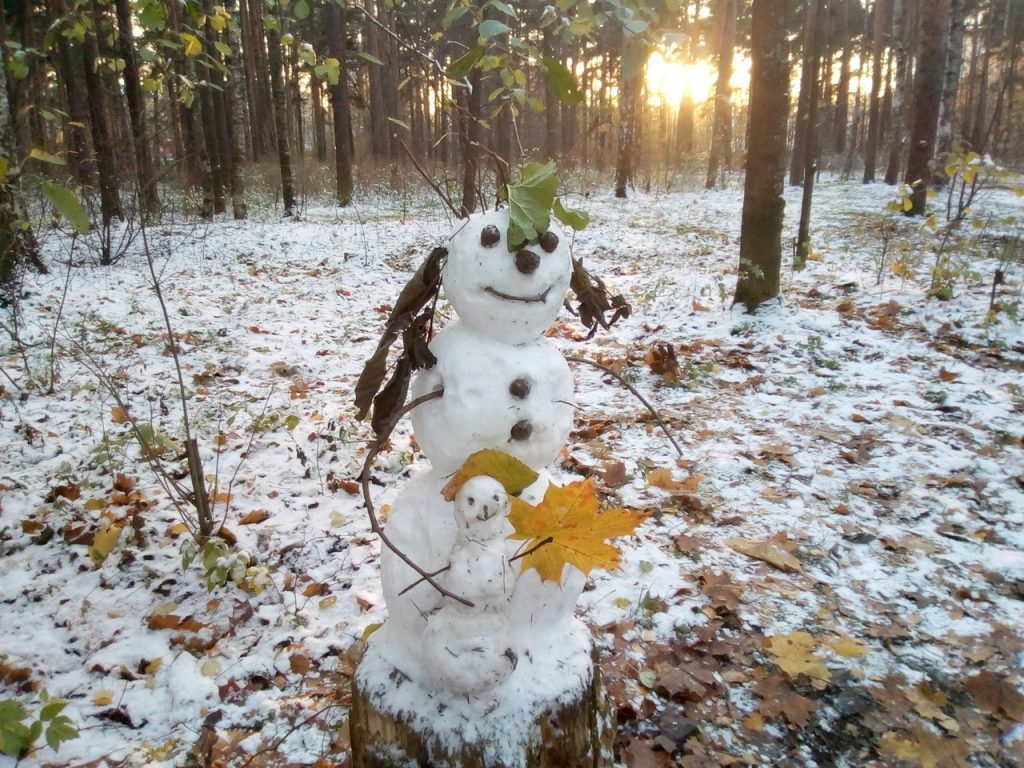 Красивые картинки на рабочий первый снег (6)