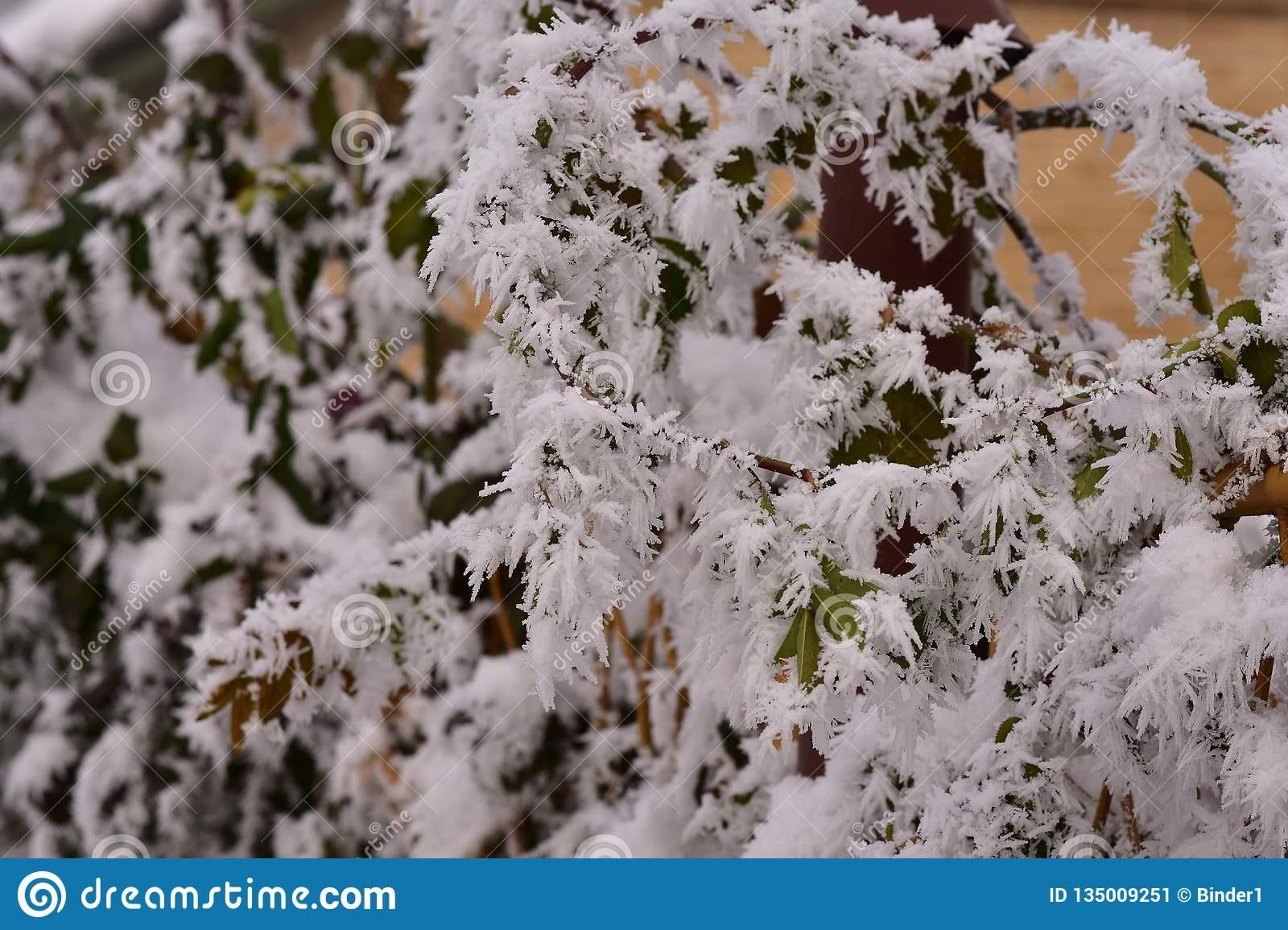 Красивые картинки на рабочий первый снег (9)