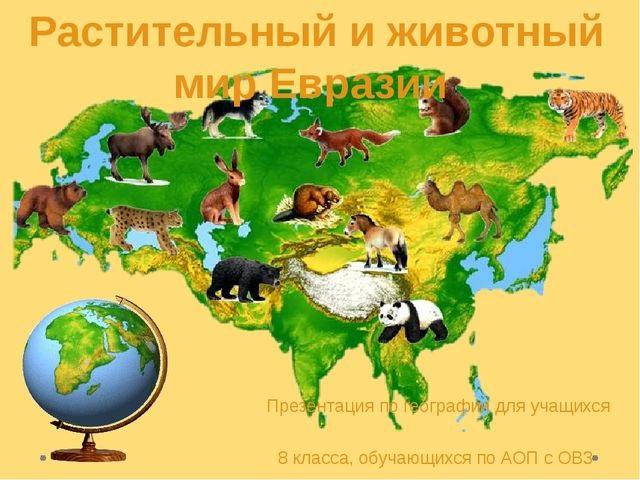 Красивые картинки на тему животный мир (3)