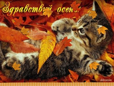 Красивые картинки первый день осени (11)