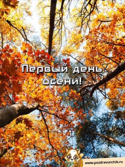 Красивые картинки первый день осени (19)