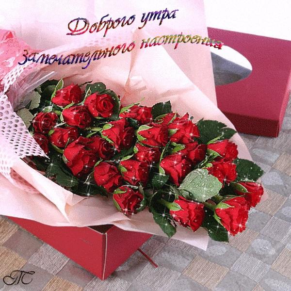 Красивые картинки с добрым утром красавица (11)