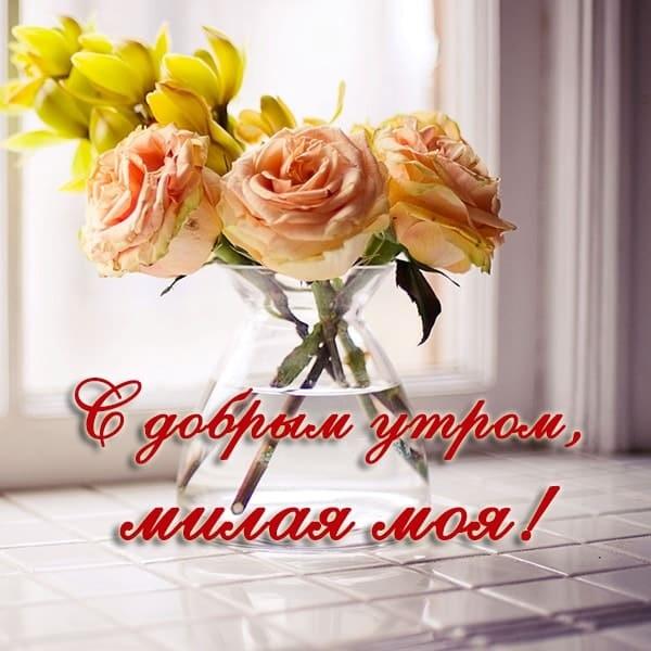 Красивые картинки с добрым утром красавица (2)