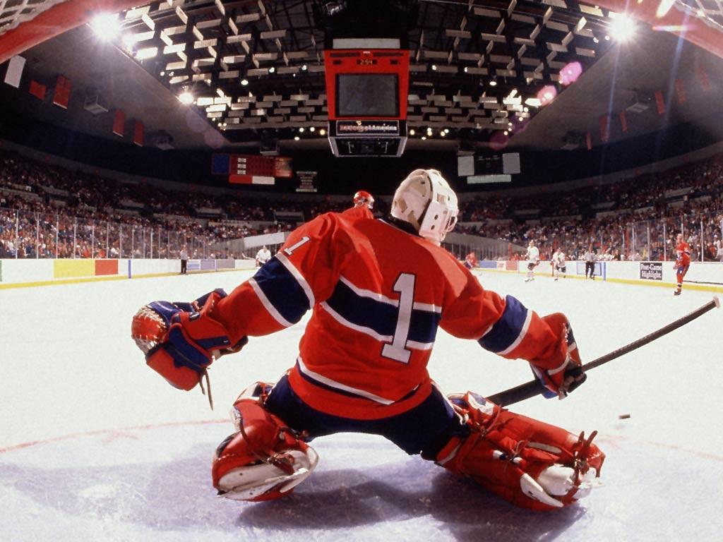 Красивые фото на рабочий стол хоккей (1)