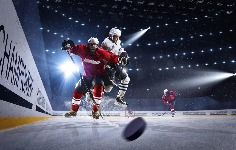 Красивые фото на рабочий стол хоккей (12)