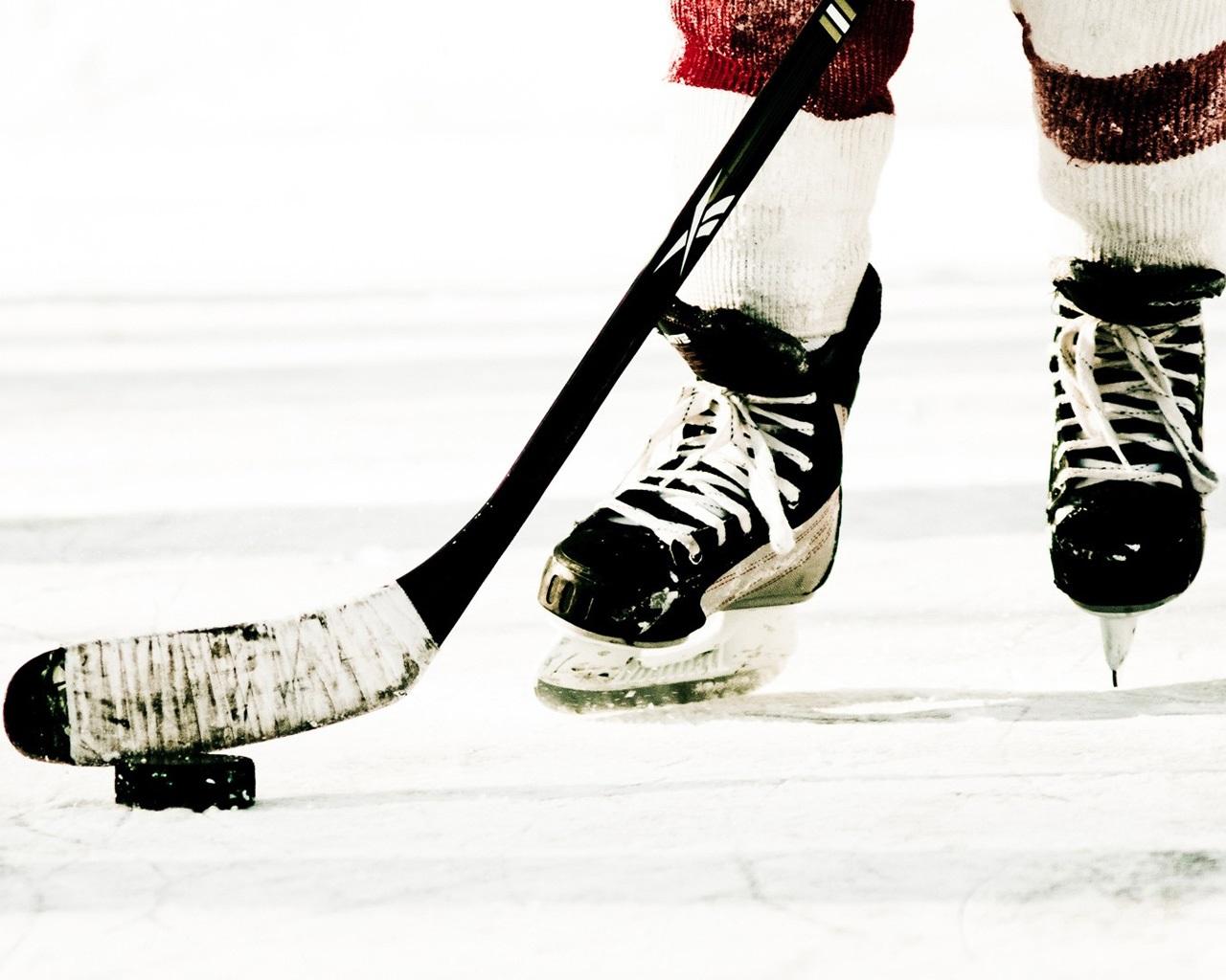 Красивые фото на рабочий стол хоккей (17)