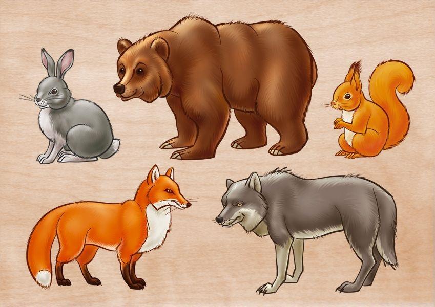 Лесные животные фото для детей (16)
