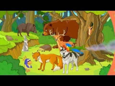 Лесные животные фото для детей (6)