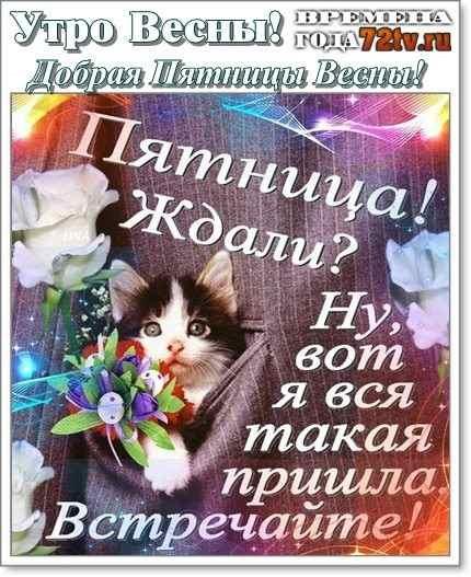 Лучшие открытки с добрым утром пятница (11)