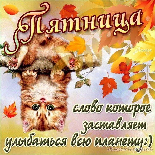 Лучшие открытки с добрым утром пятница (12)