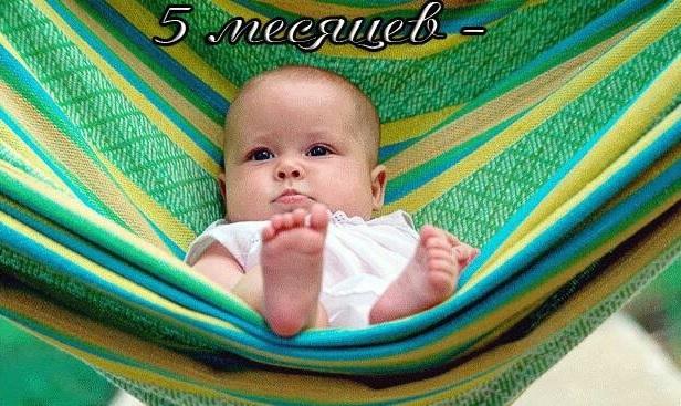Малышу 5 месяцев поздравления картинки (1)