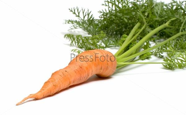 Морковь на белом фоне картинка (13)