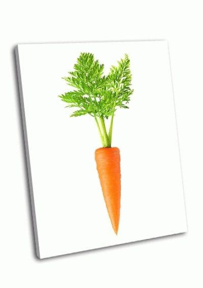 Морковь на белом фоне картинка (5)