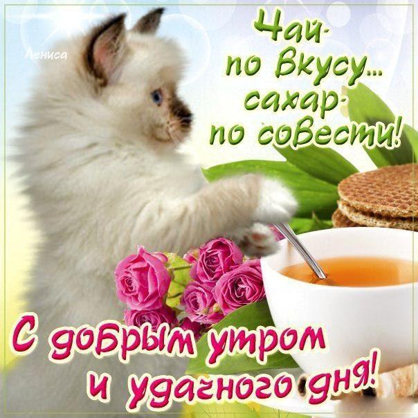 Открытки доброе всем утро и хорошего дня (1)