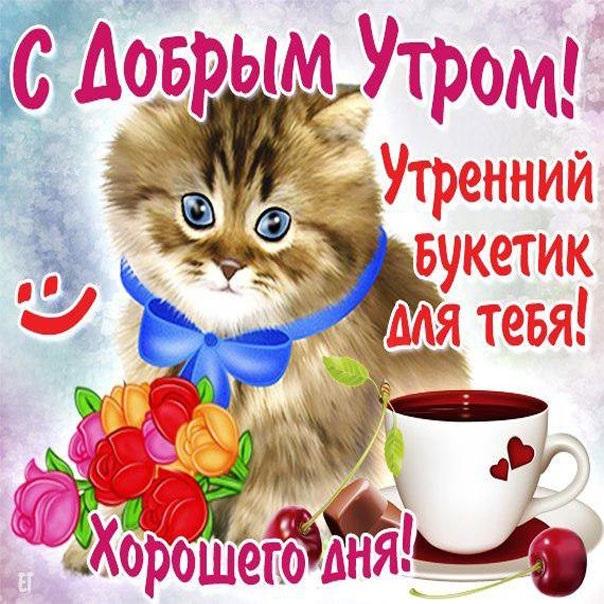 Открытки доброе всем утро и хорошего дня (15)