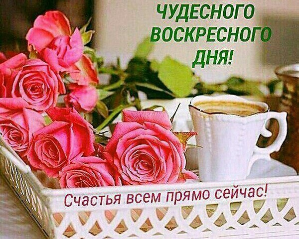 Открытки доброе всем утро и хорошего дня (16)
