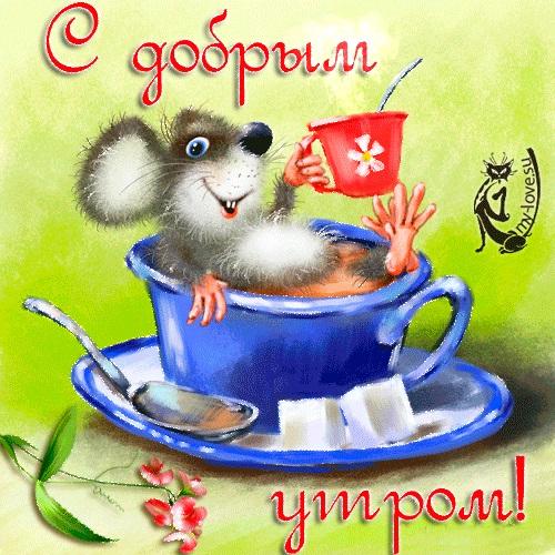 Открытки доброе всем утро и хорошего дня (17)