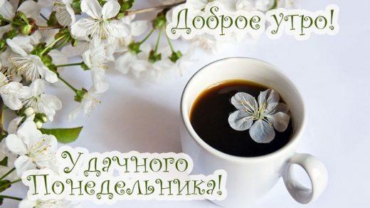 Открытки доброе всем утро и хорошего дня (24)
