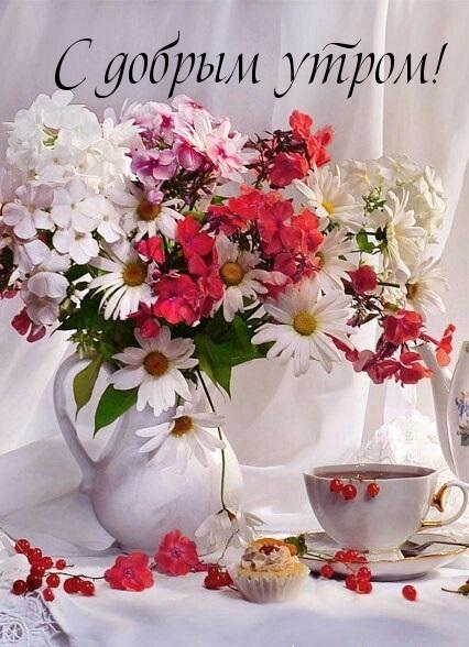 Открытки доброе всем утро и хорошего дня (4)