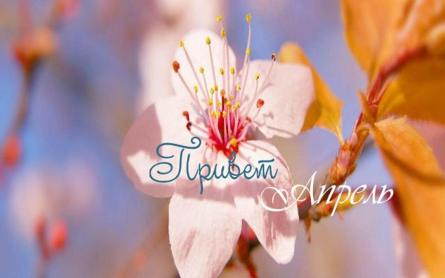 Привет апрель, красивые картинки и открытки (15)