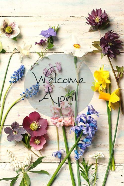 Привет апрель, красивые картинки и открытки (6)