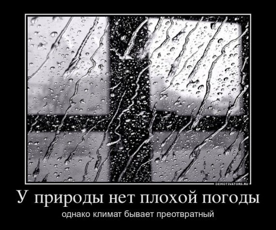Прикольные и смешные картинки о плохой погоде (10)