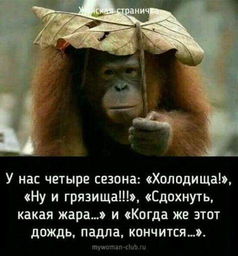 Прикольные и смешные картинки о плохой погоде (4)