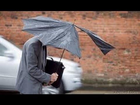 Прикольные и смешные картинки о плохой погоде (9)