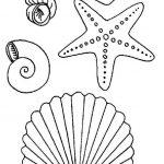 Рисуем морских обитателей с детьми — подборка рисунков