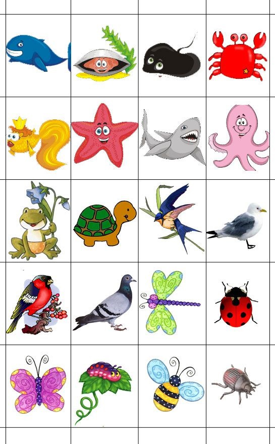 Рисуем морских обитателей с детьми - подборка рисунков (17)