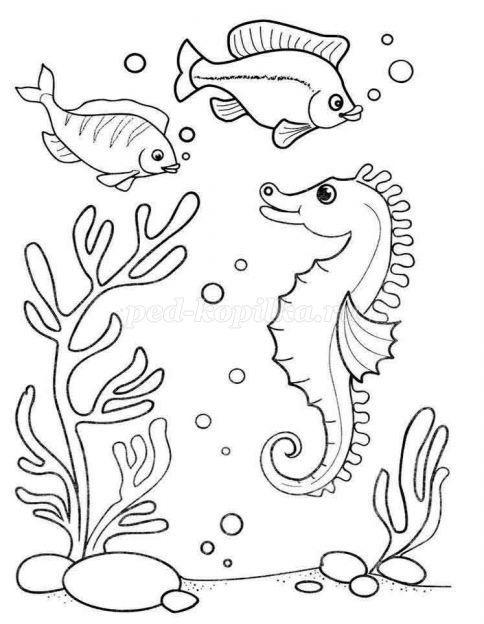 Рисуем морских обитателей с детьми - подборка рисунков (9)