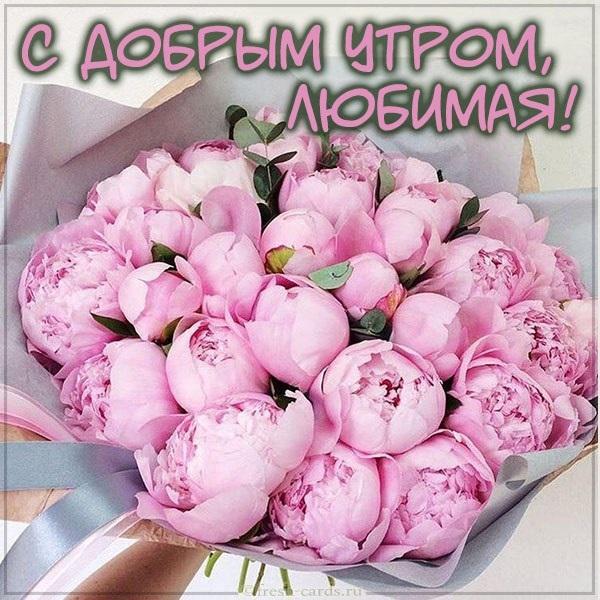 Романтические картинки доброе утро любимая (16)