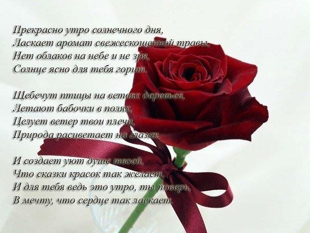 Романтические картинки доброе утро любимая (24)