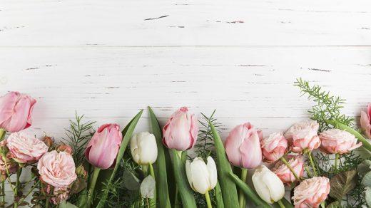 Самые лучшие картинки на телефон тюльпаны (20)