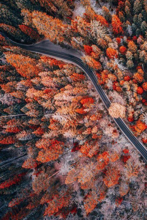 Скачать картинки на телефон Осень (2)