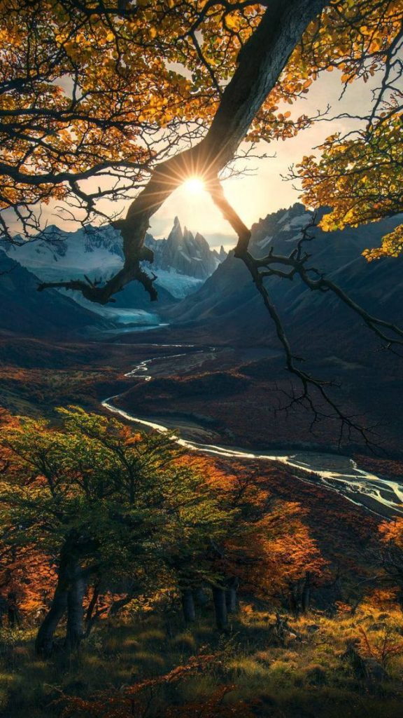 Скачать картинки на телефон Осень (23)