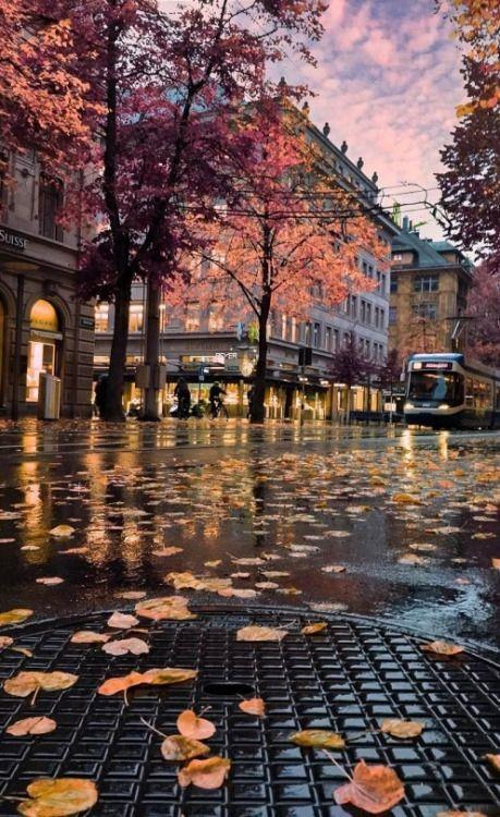 Скачать картинки на телефон Осень (5)