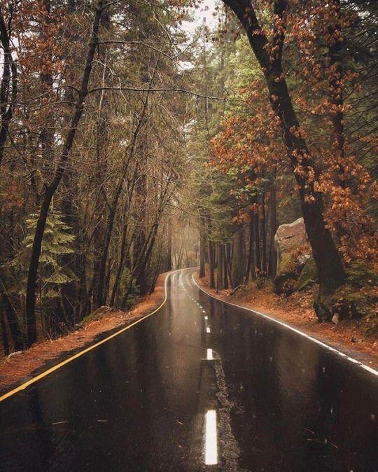 Скачать картинки на телефон Осень (6)
