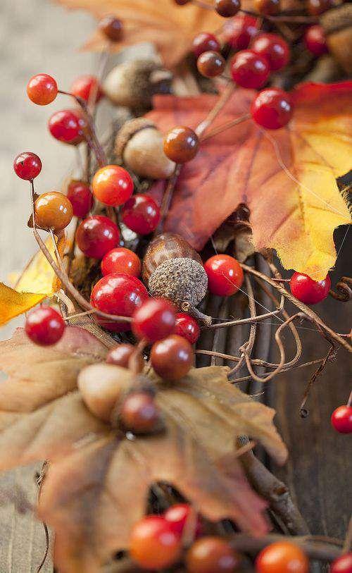 Скачать картинки на телефон Осень (9)