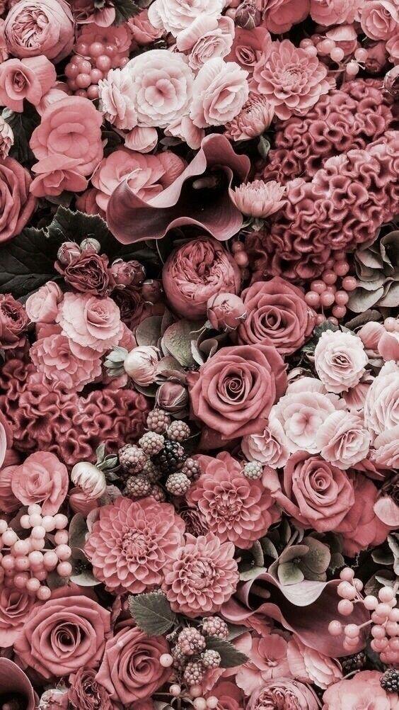 Цветы на заставку телефона фото и обои (11)