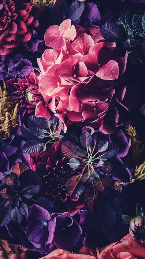 Цветы на заставку телефона фото и обои (17)