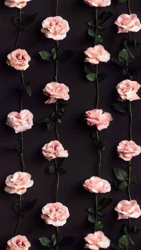 Цветы на заставку телефона фото и обои (7)