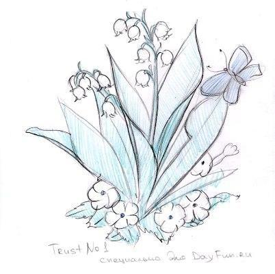 Цветы рисунок для детей карандашом (5)