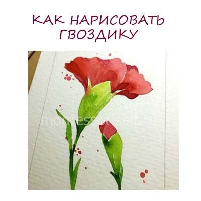 Цветы рисунок для детей карандашом (9)