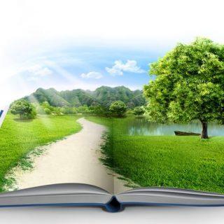 Что такое окружающая среда и экология