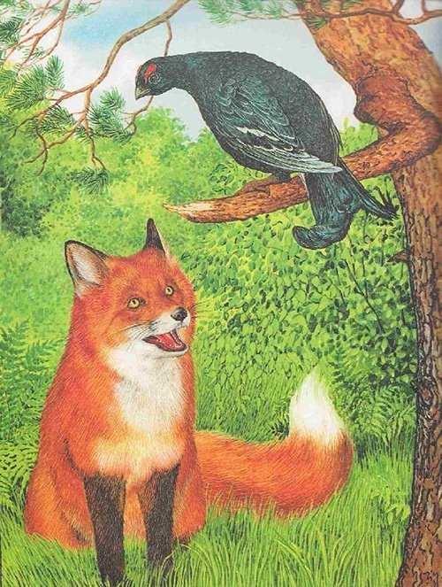 Детский рисунок лиса и тетерев (11)